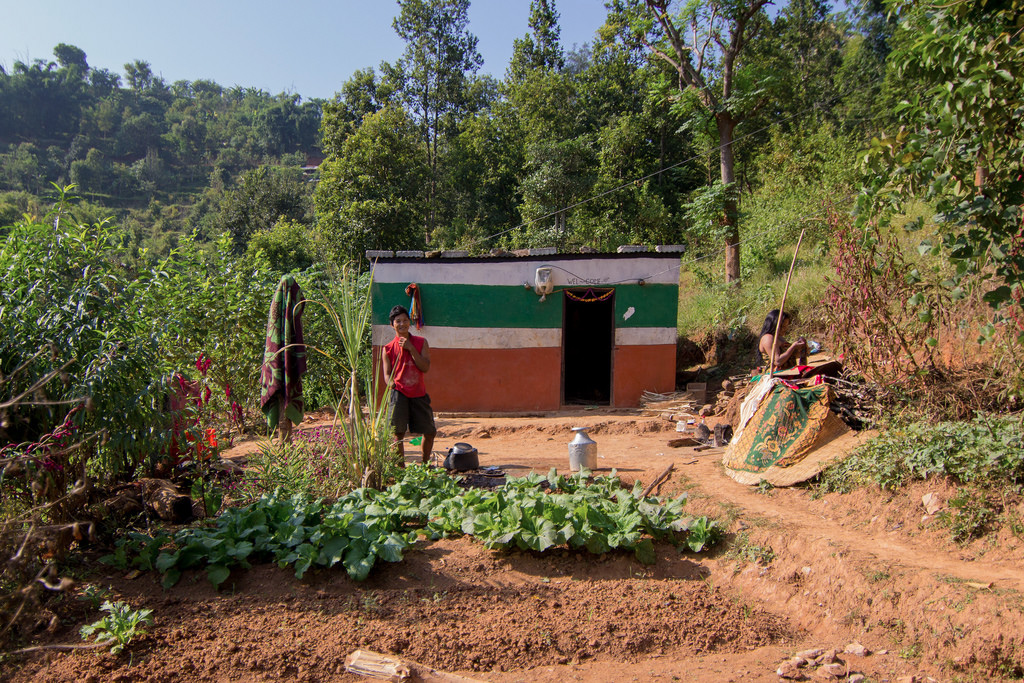 A villager growing vegetables in his garden